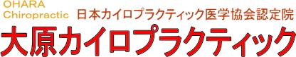 大原カイロプラクティック 岡山野田整体院